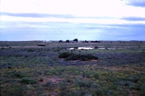 William Creek from the rail siding October 1975