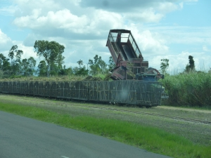 Loading cane from a field truck to a cane train