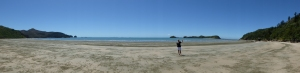 "Cape Hillsborough beach at low tide - tried ""panorama shot"" on our new camera."