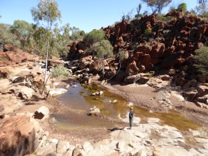 Wonmunna gorge....aboriginal rock carvings