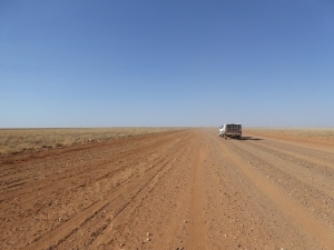Yep, looks pretty dry out there.....wherever it is......on the Tanami Desert