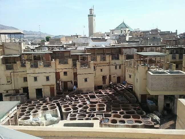 Leather tanning vats in the ancient medina of Fes.